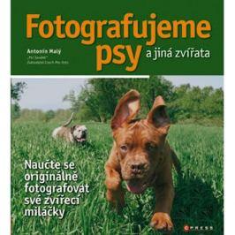 FOTOGRAFUJEME PSY A JINÁ ZVÍŘATA
