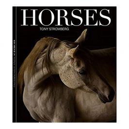 Tony Stromberg - HORSES
