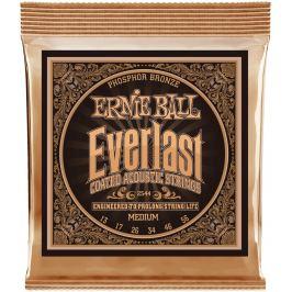 Ernie Ball Everlast Phosphor Bronze Medium