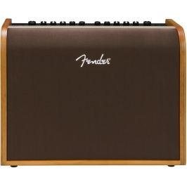 Fender Acoustic 100