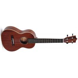 Sigma Guitars SUM-2T