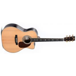 Sigma Guitars JTC-40E