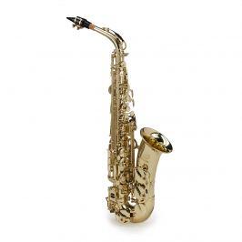 Soundsation SALSX-20