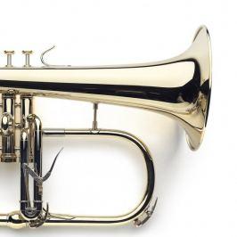 VanLaar B1 Glossy, Raw brass