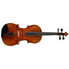 Martin W. Placht Stradivari model K
