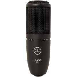 AKG P120