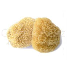 Mořská houba Karibská 7-9cm Caribbean Sun