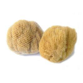 Mořská houba Karibská 12-13cm Caribbean Sun