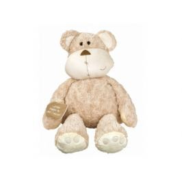 Medvěd Chlupáč