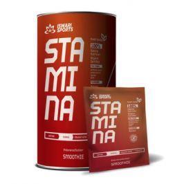 Stamina Smoothie/DURING 600g