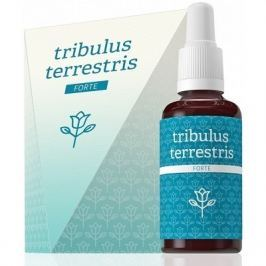 Energy Tribulus terrestris forte 30 ml
