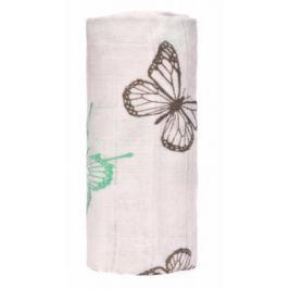 BIO Velká bambusová osuška, butterflies / motýlci