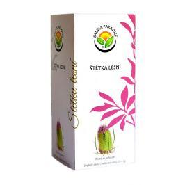 Salvia Paradise Štětka lesní n. s. 20 x 2 g