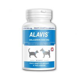 Alavis ALAVIS™ Celadrin 500 mg 60 kapslí
