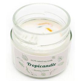 Tropikalia Tropicandle - Blooming jasmine