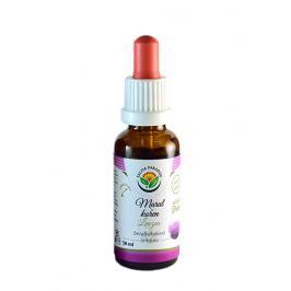 Salvia Paradise Maral - Leuzea AF tinktura 50 ml