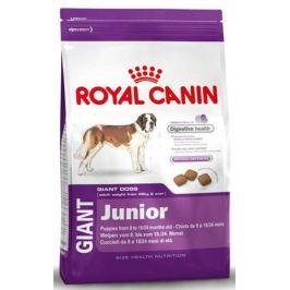 Royal Canin GIANT JUNIOR - 15kg