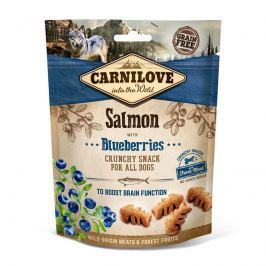 CARNILOVE dog SALMON/blueberries - 200g