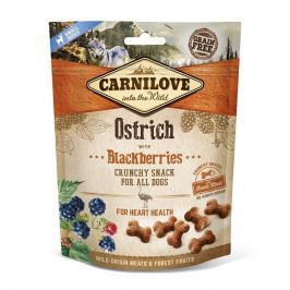CARNILOVE dog OSTRICH/blackberries - 200g